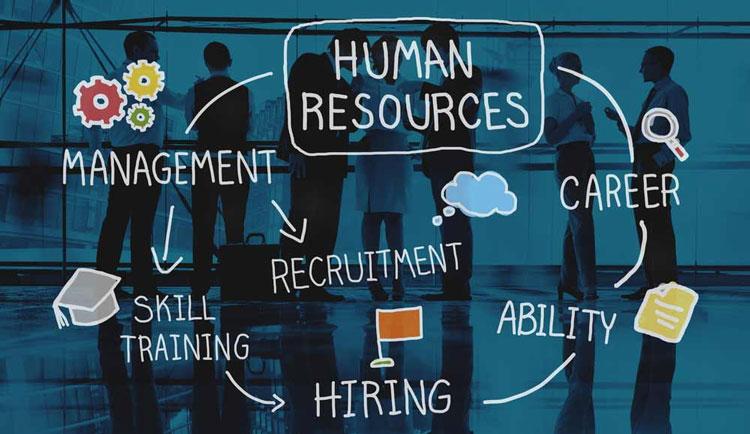 cosa-sono-le-risorse-umane